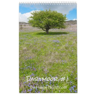 Dartmoor Calendar #1 (Medium A3) Wall Calendars