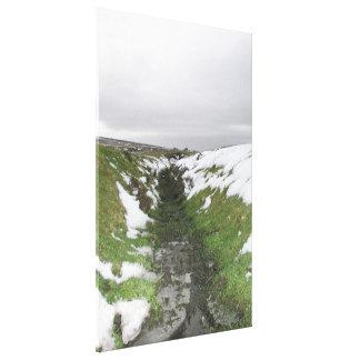 Dartmoor, Devon, UK Gallery Wrap Canvas