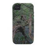Dartmoor Drewsteignton Blue Bell Woods Case-Mate iPhone 4 Covers