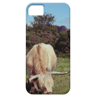 Dartmoor Highland Cow Grazeing Near Gorse Case For The iPhone 5