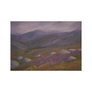 Dartmoor National Park Gallery Wrapped Canvas