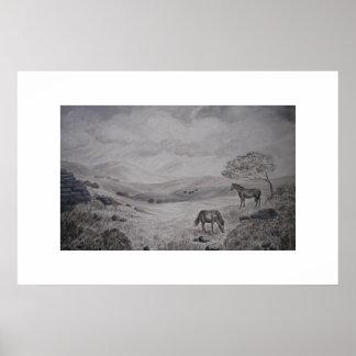 Dartmoor National Park Devon England Poster