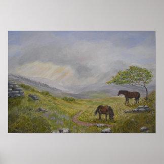 Dartmoor National Park Devon UK Poster
