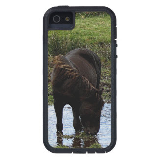 Dartmoor Pony Drinking At Watering Hole  . 1 iPhone 5 Cases