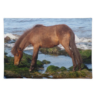 Dartmoor Pony Eating Seaweed In Remote South Devon Placemat