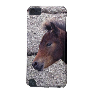 Dartmoor Pony Foal Sheltering Bone Hill Rocks iPod Touch 5G Covers