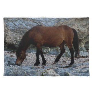 Dartmoor Pony In Rocks On Remote South Devon Beach Placemat