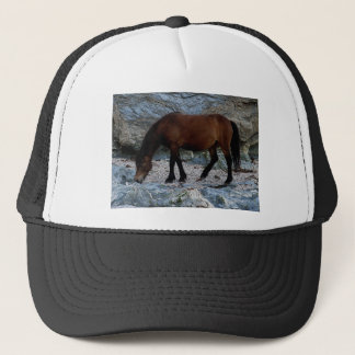 Dartmoor pony in rocks on remote south Devon beach Trucker Hat