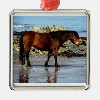 Dartmoor pony on remote beach in south Devon Christmas Ornament