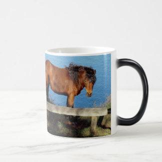 Dartmoor pony on remote coast path in south Devon Magic Mug