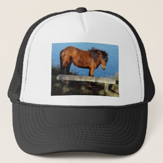 Dartmoor pony on remote coast path in south Devon Trucker Hat