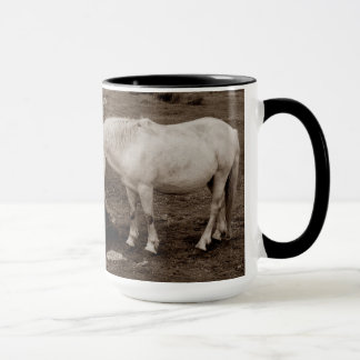 Dartmoor pony rubbing mouth on rock mug