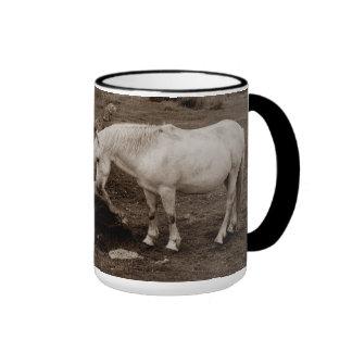 Dartmoor pony rubbing mouth on rock ringer mug