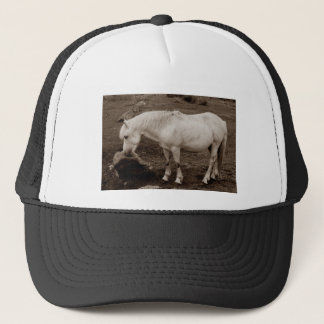 Dartmoor pony rubbing mouth on rock  ( sepia ) trucker hat