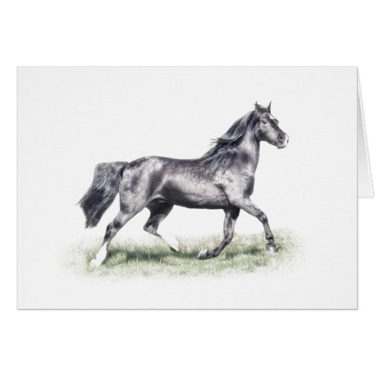 Dartmoor Pony Watercolour Birthday Card