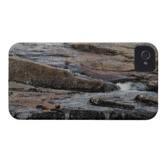 Dartmoor River Avon Shipley Bridge Early Summer .3 iPhone 4 Case