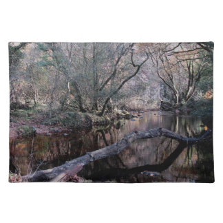 Dartmoor River Dart Holne Chase Autunm .1. Placemat
