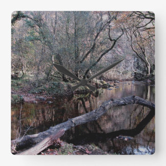 Dartmoor River Dart Holne Chase Autunm .1. Wallclock