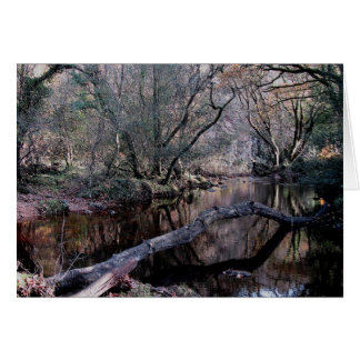 Dartmoor River Dart Holne Chase In Autunm  (1) Card