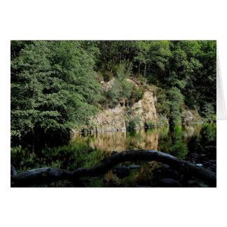 Dartmoor River Dart Holne Chase In Summer  (1) Card