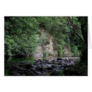 Dartmoor River Dart Holne Chase In Summer  ( 2 ) Card