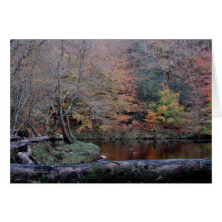 Dartmoor River Dart In Autunm  ( 2 ) Card