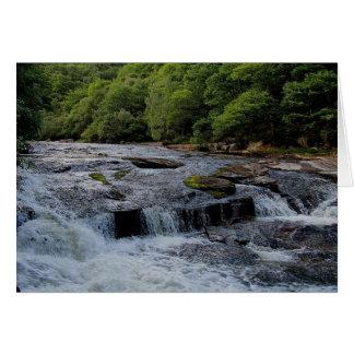 Dartmoor River Dart Rowbrook Early Summer  ( 2 ) Card