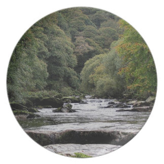 Dartmoor River Dart Vally Near Dartmeet Plate