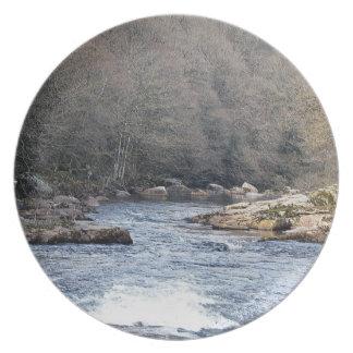 Dartmoor River Dart Vally Rowbrook Early Spring Party Plate