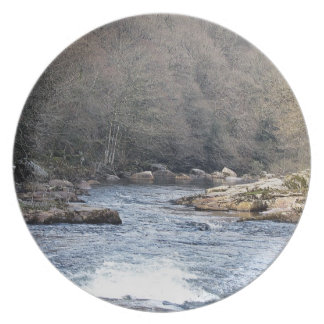 Dartmoor River Dart Vally Rowbrook Early Spring Plate