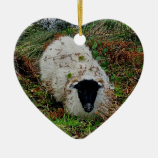 Dartmoor Sheep In Hideing Christmas Ornament