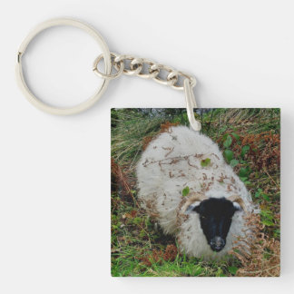 Dartmoor Sheep In Hideing Double-Sided Square Acrylic Key Ring