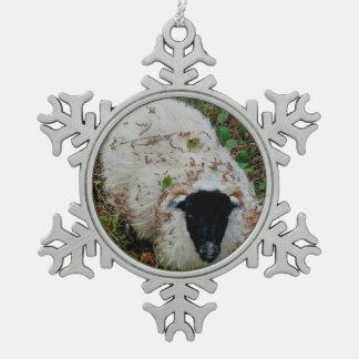 Dartmoor Sheep In Hiding Snowflake Pewter Christmas Ornament
