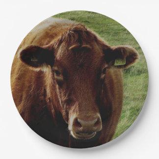 Dartmoor South Devon Cow Looking Paper Plate