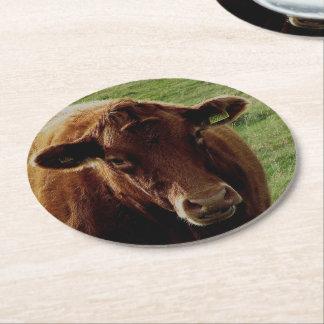 Dartmoor South Devon Cow Looking Round Paper Coaster