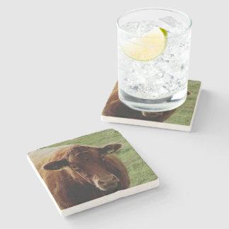 Dartmoor South Devon Cow Looking Stone Coaster