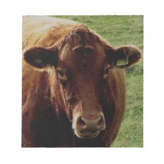 Dartmoor South Devon Cow Notepad