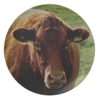 Dartmoor South Devon Cow Plate