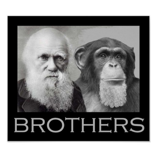 Darwin and Chimp Brothers Poster