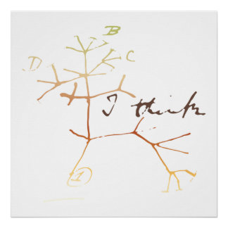 Darwin, I think tree of life Poster