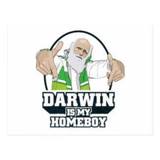 Darwin Is My Homeboy (Full Color) Postcard