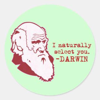Darwin Round Sticker