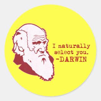 Darwin Round Stickers