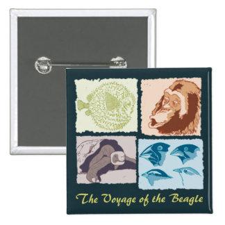 Darwin, The Voyage of the Beagle Pin
