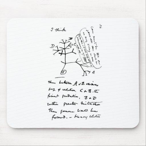 Darwin Tree Mousepad