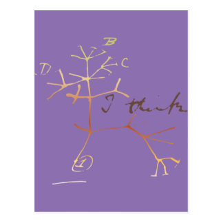 Darwin tree of life: I think Postcard
