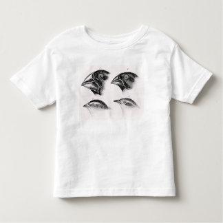 Darwin's bird observations toddler T-Shirt