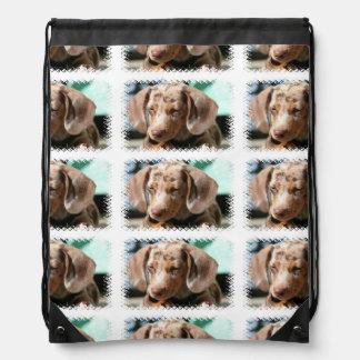 Daschund Dog Drawstring Bag