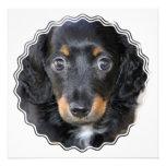 Daschund Dog Invitation