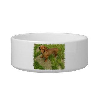 Daschund Pet Bowl